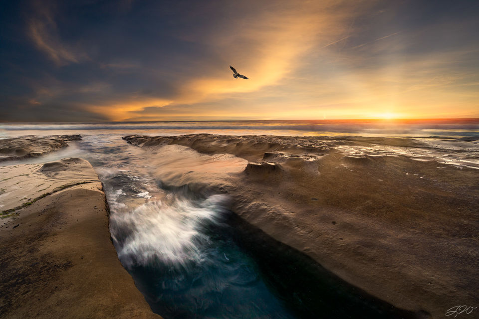 la jolla, california, sunset, san diego, pacific ocean, tide pool, wave, seagull, seascape