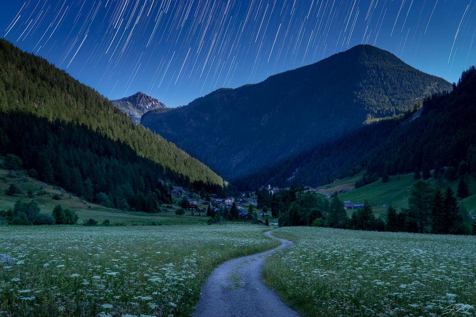 switzerland, europe, star trails, wildflowers, night sky, earth, long exposure
