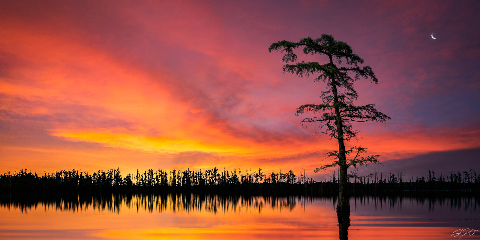 Clouds, Lake, Landscape, Moon, Reflection, Sunset, bald cypress, vibrant, panorama, photo