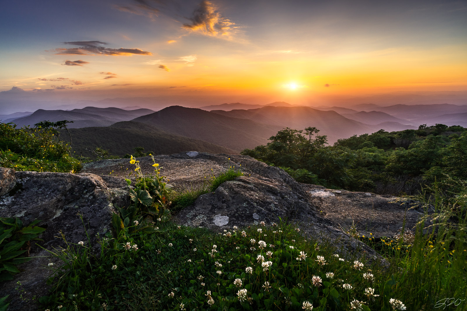 mountains, clover, flowers, craggy gardens, landscape, sunset, wildflowers, focus stacking, photo