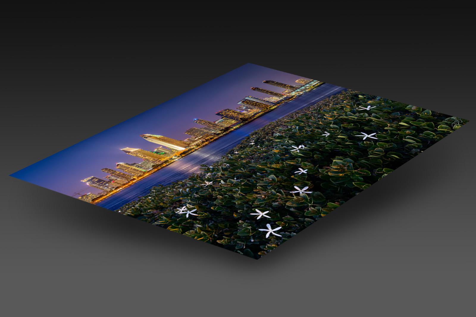 LUMACHROME HD ACRYLIC (Ready to Hang) print preview